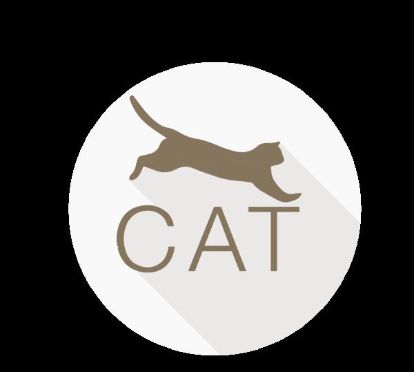 CAT - Certified Agile Tester